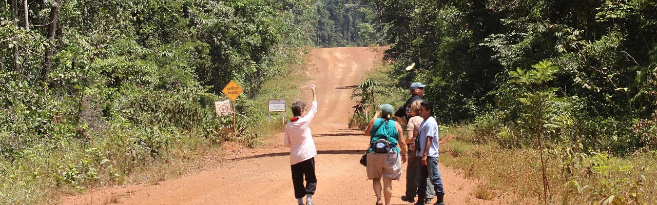 Birding Guyana, Guyana, Guyana Nature Tour, Guyana Birding Tour, Guyana Wildlife Tour; Naturalist Journeys
