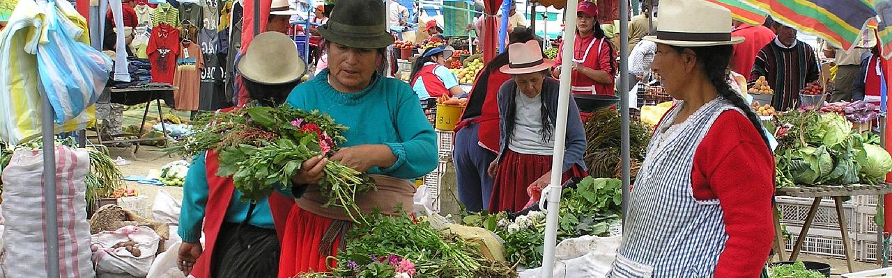 Andean Market, Ecuador, Ecuador Nature Tour, Ecuador Birding Tour, Naturalist Journeys