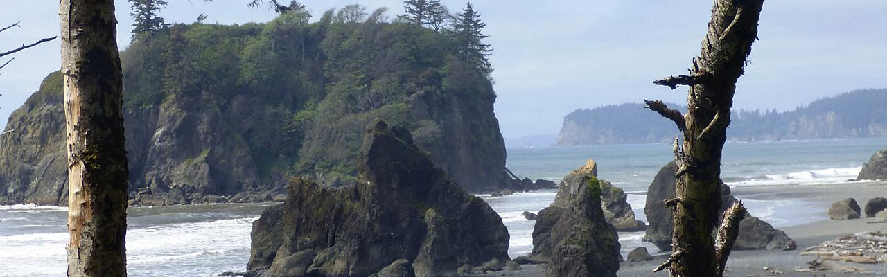 Rialto Beach, Pacific Northwest, Olympic Peninsula, Olympic National Park, Washington, Naturalist Journeys