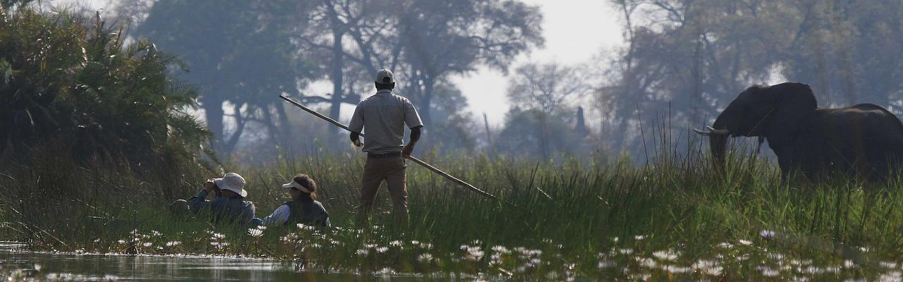 Mokoro ride, Okavango Delta, Botswana, African Safari, Botswana Safari, Naturalist Journeys
