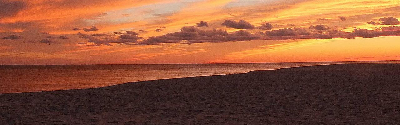 Cape May Sunset, Cape May, Fall Migration Tour, Birding Migration Tour, Naturalist Journeys