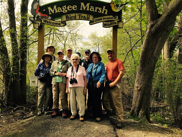 Birding Magee Marsh Boardwalk, Ohio, Spring Migration Tour, Ohio Migration Tour, Ohio Birding Tour, Naturalist Journeys