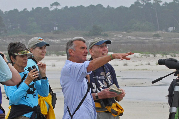 Alabama, Dauphin Island, Bird Migration Tour, Naturalist Journeys