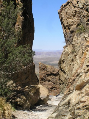 Window Trail, Big Bend National Park, Texas, Naturalist Journeys, Big Bend Nature Tour, Big Bend Birding Tour