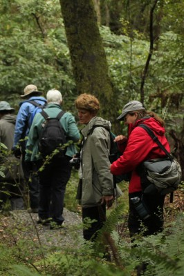 Hiking New Zealand, New Zealand, New Zealand Nature Tour, Naturalist Journeys