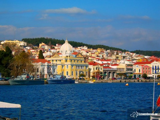 Mytilene, Greece, Greece Birding Tour, Greece Nature Tour, Spring Migration Tour, Naturalist Journeys