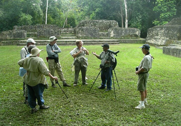 Birding Mayan Ruins, Belize, Belize Nature Tour, Belize Birding Tour, Naturalist Journeys