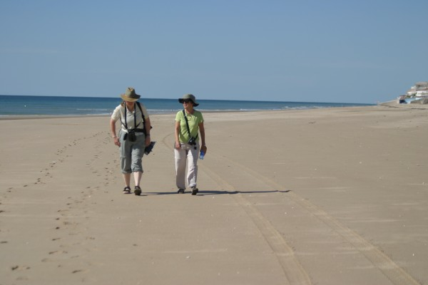 Beach walk, Mexico, Sea of Cortez, Nature Cruise, Sea of Cortez cruise, Naturalist Journeys