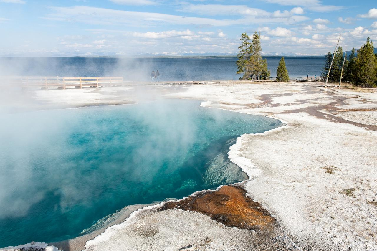 West Thumb Thermals, Yellowstone National Park, Nature Tour, Wildlife Tour, National Park, Naturalist Journeys