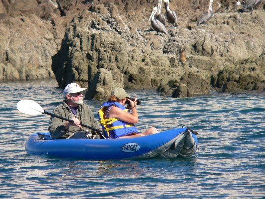 Kayaking the Sea of Cortez, Mexico, Sea of Cortez, Nature Cruise, Sea of Cortez cruise, Naturalist Journeys