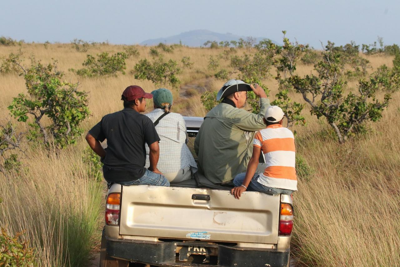 Karanambu, Guyana, Guyana Nature Tour, Guyana Birding Tour, Guyana Wildlife Tour; Naturalist Journeys