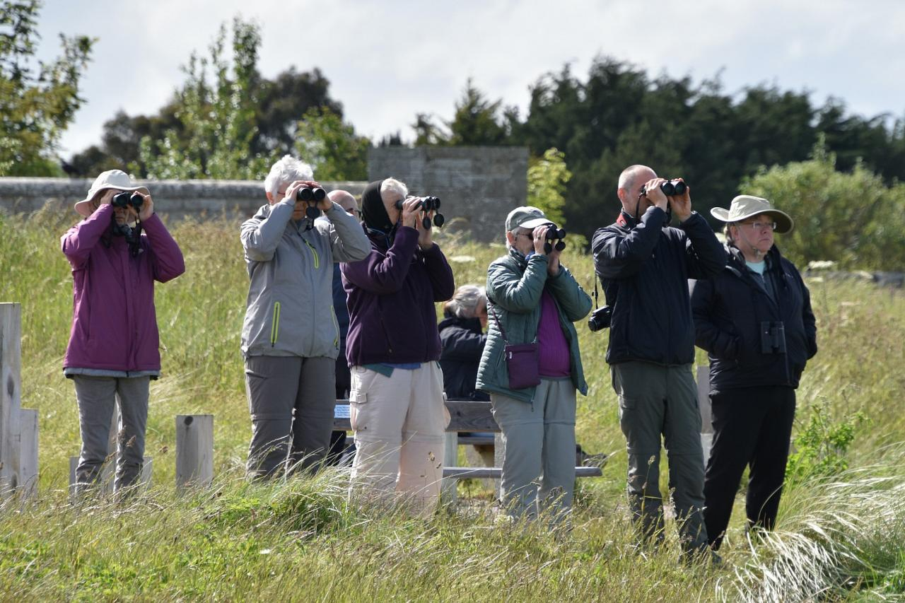 Birding Group, Scotland, Scottish Highlands, Scottish Islands, Scotland Birding Tour, Scotland Nature Tour, Naturalist Journeys