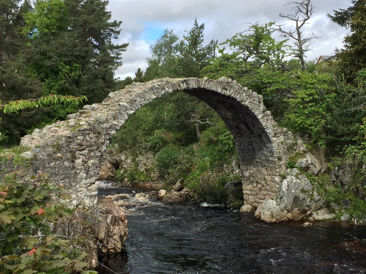 Carr Bridge, Scotland, Scottish Highlands, Scottish Islands, Scotland Birding Tour, Scotland Nature Tour, Naturalist Journeys
