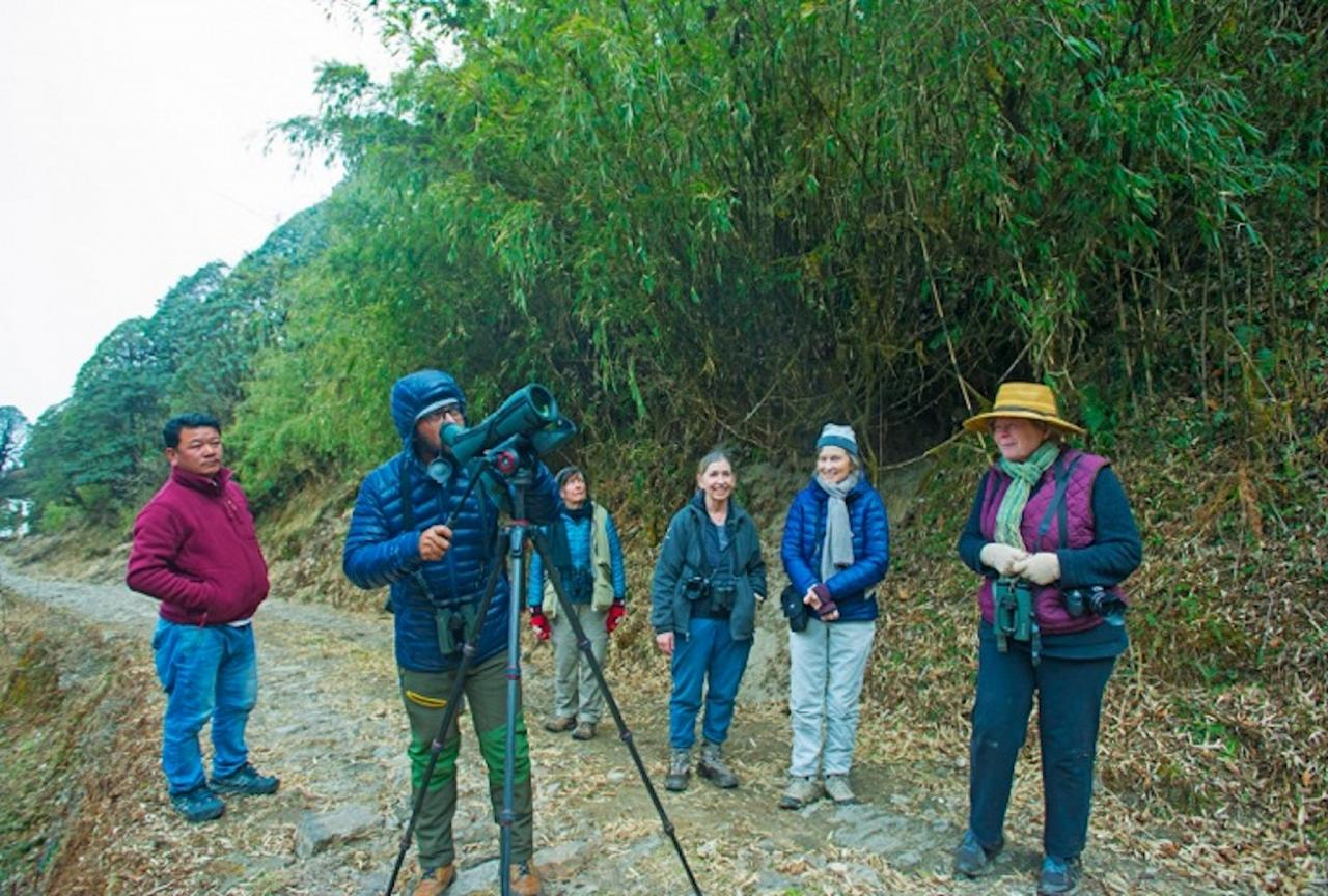 Birding, India Nature Tour, India Wildlife Tour, India Wildlife Safari, Naturalist Journeys
