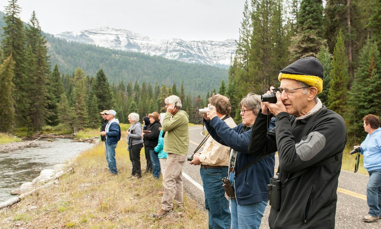 Group birding, Yellowstone National Park, Nature Tour, Wildlife Tour, National Park, Naturalist Journeys