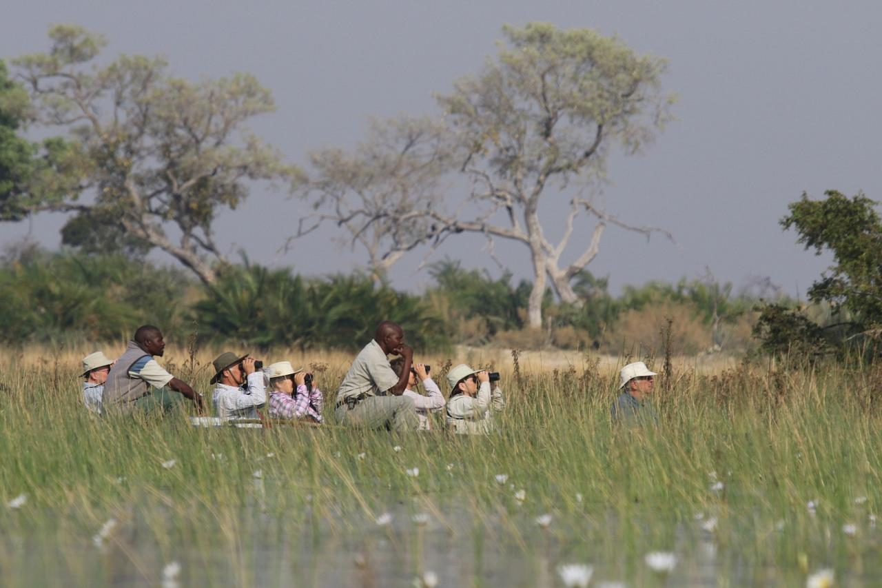 Exploring Mokoro,  Botswana, Africa Safari, Naturalist Journeys, Wildlife Tour, Africa Wildlife