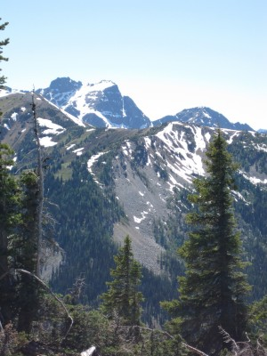 Cascade Mountains, Pacific Northwest, Olympic Peninsula, Washington, Naturalist Journeys