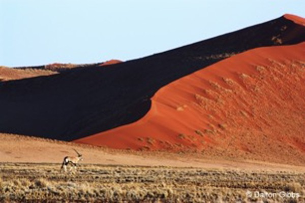 Red Dunes, Namibia, Naturalist Journeys