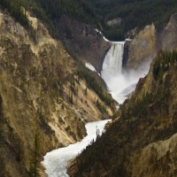 Yellowstone Falls, Yellowstone National Park, Yellowstone, Naturalist Journeys